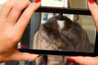 Redes sociales: suma tu negocio a la tendencia de los videos
