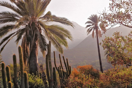 Trekking por Parque Nacional La Campana