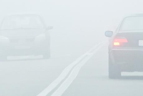 neblina1.jpg